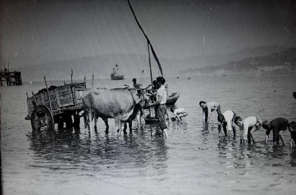 El Arenal recogiendo almejas. Años 20